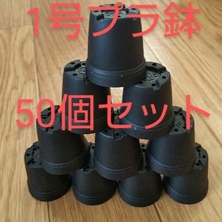 1号プラ鉢*50個セット(プランター)