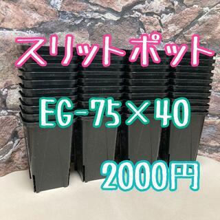 ◎40個◎ロング スリットポット EG-75L slitpot プラ鉢(プランター)