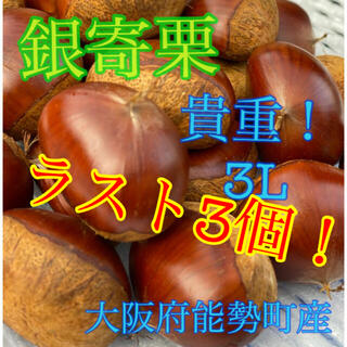 銀寄栗 3L 3個(野菜)