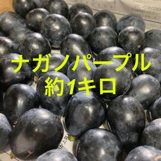 信州産 ナガノパープル 約1キロ         2(フルーツ)