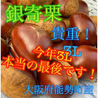 専用 銀寄栗3L1キロ+2L2キロ(野菜)