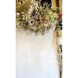 理想的かすみ草と孔雀草大きなアンティークフライングリース○ドライフラワーリース (リース)