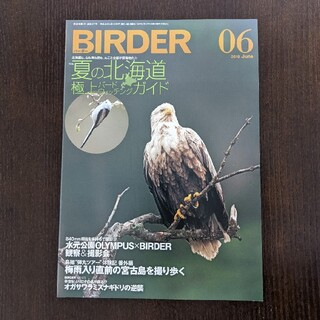 BIRDER (バーダー) 2018年 06月号