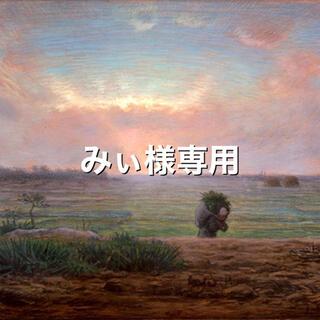 みぃ様専用〜スモークツリーのフライングリース×2(リース)