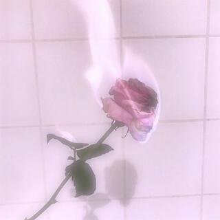サンダイメジェイソウルブラザーズ(三代目 J Soul Brothers)の☆3JSB☆様専用(国内アーティスト)