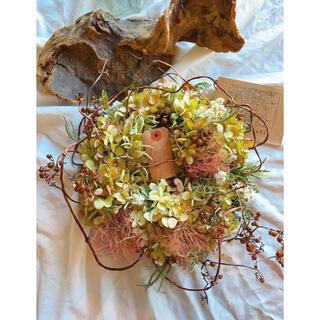 〜秋深まる〜カシワバアジサイとスモークツリーのリース○ドライフラワーリース (リース)