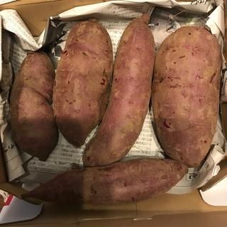 紫芋1.4キロ(野菜)