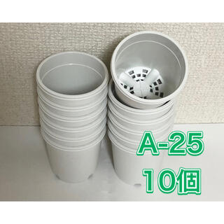 《A-25》白 10個 2.5号 丸型 スリット鉢 プラ鉢 多肉植物 生産者(プランター)