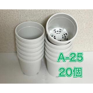 《A-25》白 20個 2.5号 丸型 スリット鉢 プラ鉢 多肉植物 生産者(プランター)