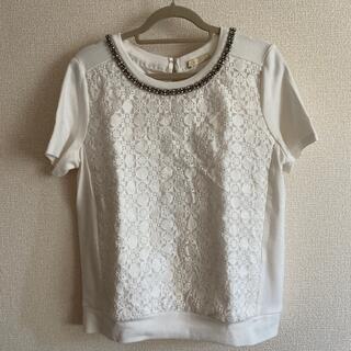 アクアガール(aquagirl)のアクアガール トップス(カットソー(半袖/袖なし))