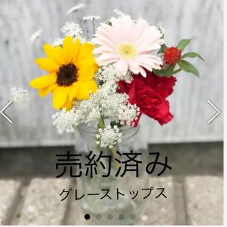 グレースコンチネンタル(GRACE CONTINENTAL)のグレースコンチネンタル レースフレアトップス(チュニック)