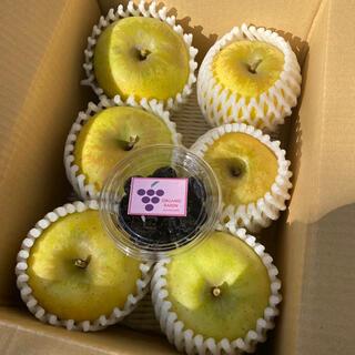 ナガノパープルのドライフルーツ付き!りんご6玉(フルーツ)