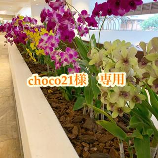 アガット(agete)のchoco21様 専用(その他)