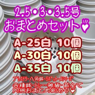 プラ鉢30個おまとめセット♪【2.5号・3号・3.5号鉢各10個】プレステラ多肉(プランター)