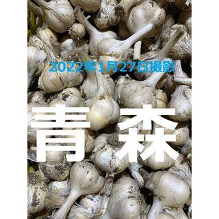 青森県産にんにく20kg M ニンニク20キロ 福地ホワイト6片種 訳あり①(野菜)