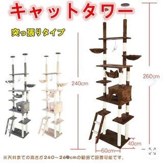 キャットタワー 突っ張り型 おしゃれ スリム 安定感 260cm つっぱり 大型(猫)