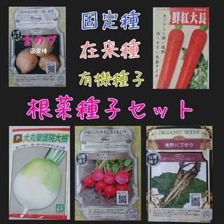 根菜種子セット 固定種 在来種 有機種子 野菜の種 家庭菜園 種子 種(野菜)