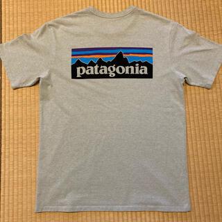 パタゴニア(patagonia)のパタゴニア Tシャツ (Tシャツ(半袖/袖なし))