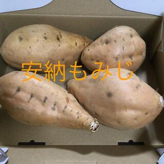 種子島産 安納芋 安納もみじ 1キロ前後(野菜)