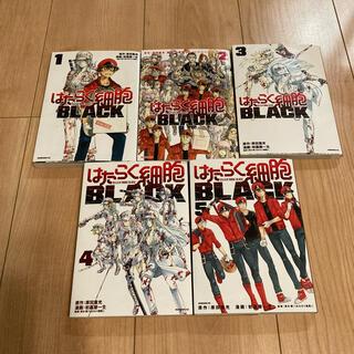 はたらく細胞 BLACK 1〜5巻セット(青年漫画)