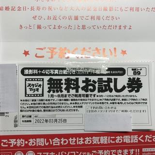キタムラ(Kitamura)のスタジオマリオ無料お試し券 (その他)