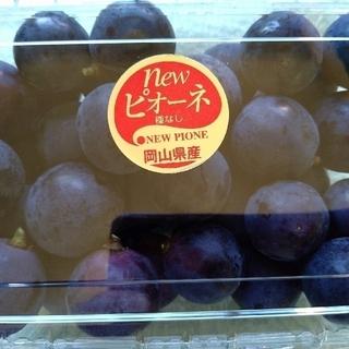訳あり4種 ブドウ ピオーネ、雄宝、クイーンニーナ、シャイン、合計2.4kg (フルーツ)