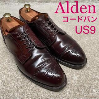 Alden - Alden オールデン コードバン セミブローグ バーガンディ US9