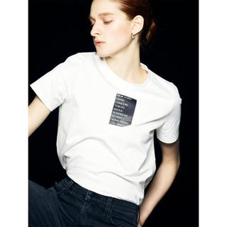 セオリー(theory)のTheory セオリー Tシャツ 2021限定品(Tシャツ(半袖/袖なし))