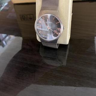スカーゲン(SKAGEN)のスカーゲン メンズ腕時計 クォーツ 黒文字盤(腕時計(アナログ))
