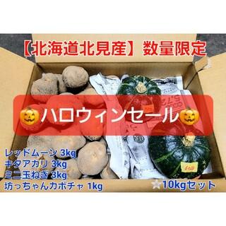 【北海道 北見産】野菜セット カボチャ じゃがいも ハロウィンセール ◎農家直送(野菜)