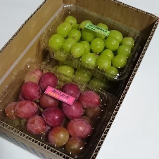 ②訳あり4種 ブドウ ピオーネ、クイーンニーナ、シャイン、雄宝、合計2.4kg (フルーツ)