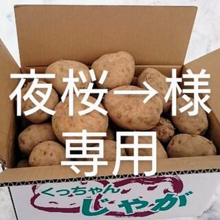 北海道産 野菜詰め合わせ(野菜)