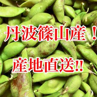 丹波篠山黒枝豆!期間限定!(野菜)