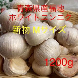 新物 青森県産福地ホワイトニンニク Mサイズ1200g (野菜)