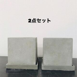 オシャレセメント鉢 2点セット 10cm(プランター)