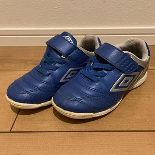 UMBRO - 男の子 サッカーシューズ  アンブロ  トレーニングシューズ 靴 17cm