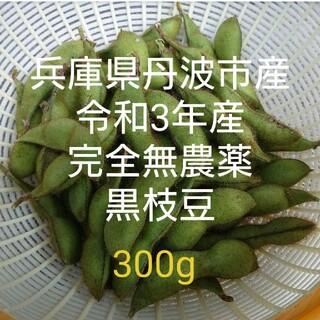 令和3年度産 兵庫県丹波市産 完全無農薬 黒枝豆 さやのみ 300g(野菜)