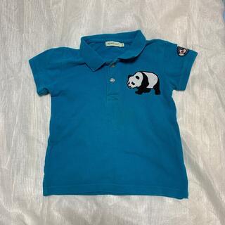 コドモビームス(こどもビームス)のこどもビームスポロシャツ110(Tシャツ/カットソー)
