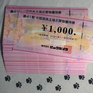 20000円分 ビックカメラ 株主優待券(ショッピング)