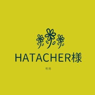 HATACHER様専用☆多肉植物(その他)