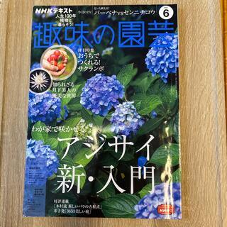 NHK 趣味の園芸 2021年 06月号