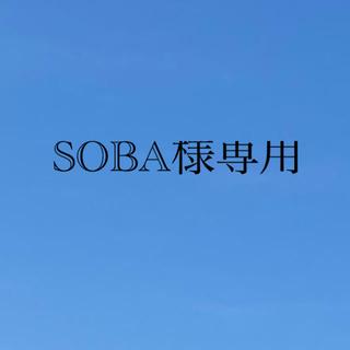 SOBA様専用 ナガノパープル 2キロ(フルーツ)