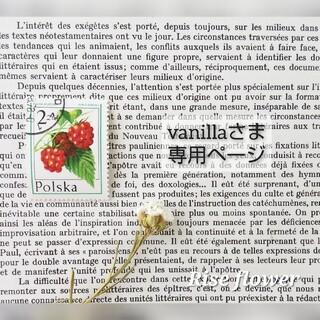 vanillaさま専用ページ(ドライフラワー)