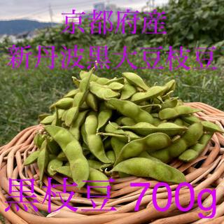 期間限定!今が旬!京都府産 ムッチムチの新丹波黒大豆枝豆 700g  黒枝豆(野菜)