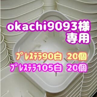 【スリット鉢】プレステラ90白20個 他 多肉植物 プラ鉢(プランター)