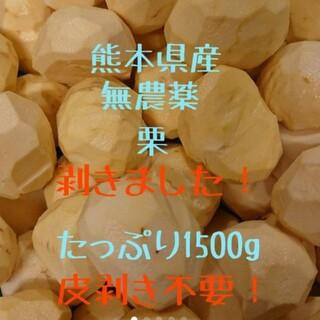 【即購入OK】熊本県産 むき栗 1500g ☆無農薬(フルーツ)