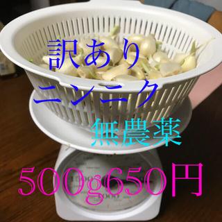 農家直送 奈良県産ニンニク(野菜)