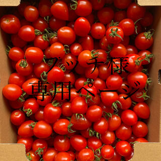 ブッチ様専用ページ 同梱ページ(野菜)