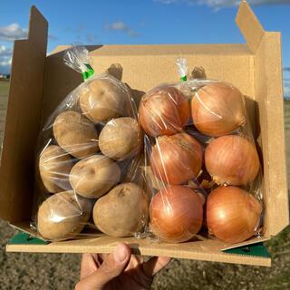 ✴︎残りわずか✴︎新じゃがいも&新玉ねぎ お試し野菜セット1kg【北海道産】(野菜)