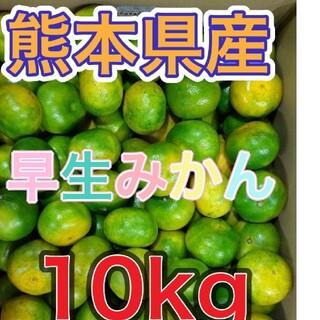 熊本産紅はるか10kg(野菜)